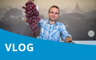 Vlog #10 – Detoxen met druiven